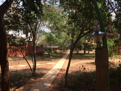 Inside Aurovile