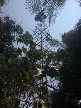 Solitude farm wind turbine