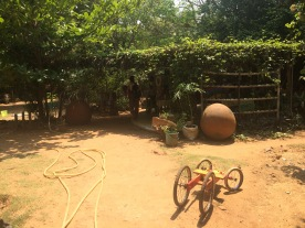Solitude organic farm